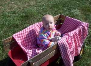 an attempt at a wagon ride